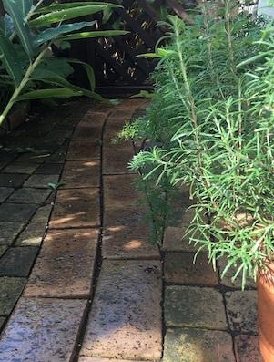 花壇より_b0011075_11014967.jpg