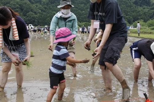 第17回 米酒の会 #1 田植え 2021年6月6日_d0171387_09484805.jpg