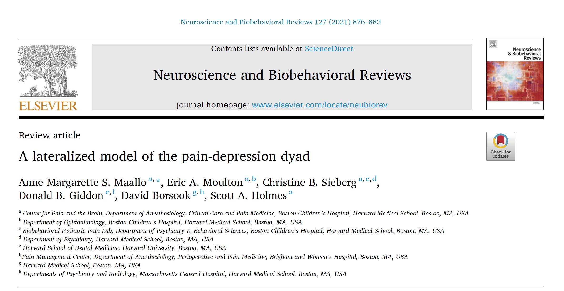 抑うつ状態の脳は、左半身に心因性疼痛を発現しうる?_b0112009_10211178.png