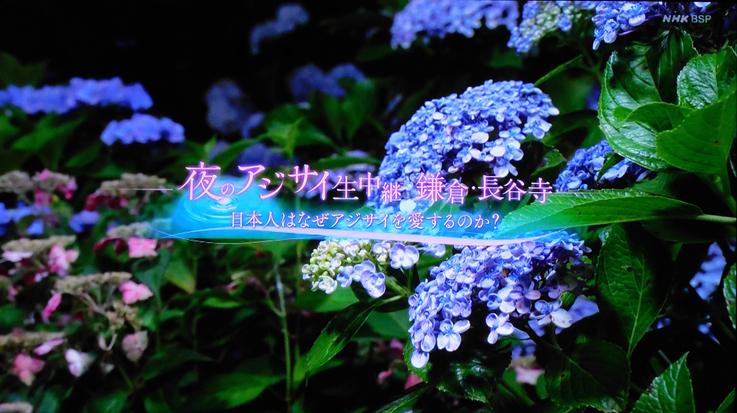 お気に入りのスポットが‥‥『そうだ 鎌倉、行こう 2021』_d0251161_07371822.jpg