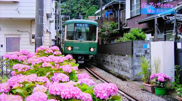 お気に入りのスポットが‥‥『そうだ 鎌倉、行こう 2021』_d0251161_07374992.jpg