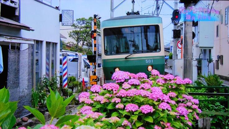 お気に入りのスポットが‥‥『そうだ 鎌倉、行こう 2021』_d0251161_07382641.jpg