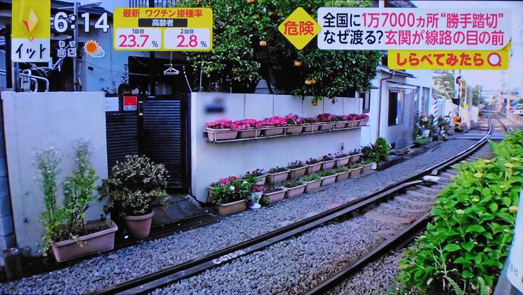お気に入りのスポットが‥‥『そうだ 鎌倉、行こう 2021』_d0251161_07404097.jpg