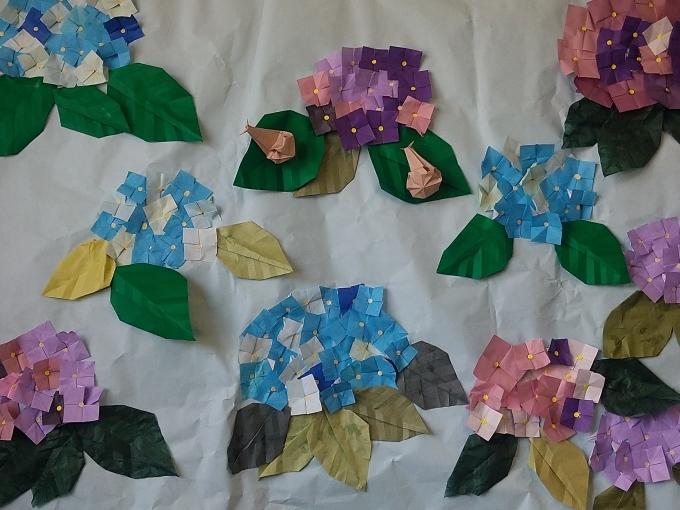 紫陽花が咲きました_e0317561_12150480.jpg