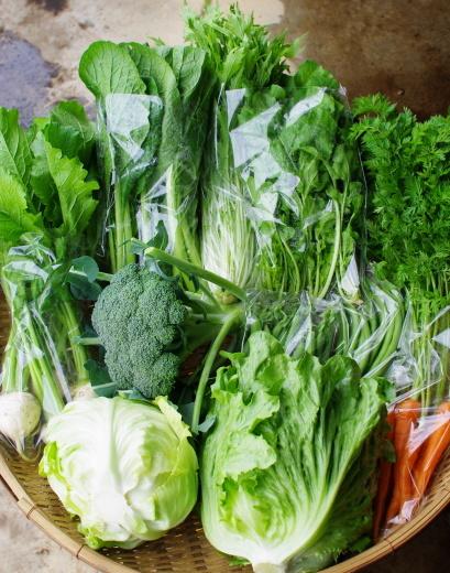 今週の野菜セット(6/15~6/19着)_c0110869_12433688.jpg