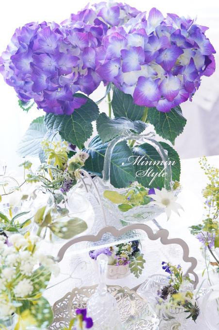 梅雨入り ~紫陽花~_c0188784_18301503.jpg
