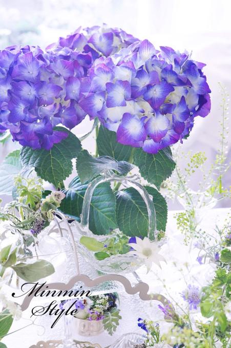 梅雨入り ~紫陽花~_c0188784_18584796.jpg