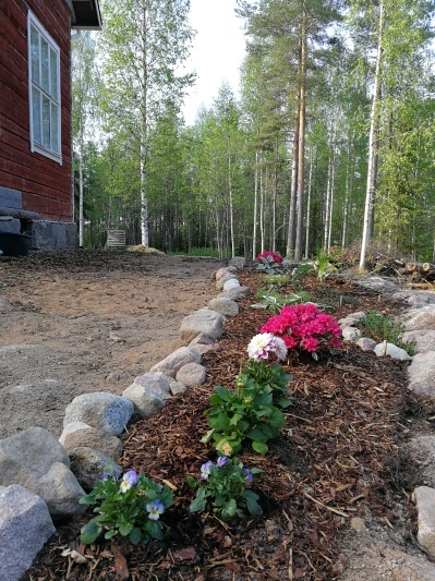 夏休みスタート!まずは庭作業_d0090294_16140547.jpg