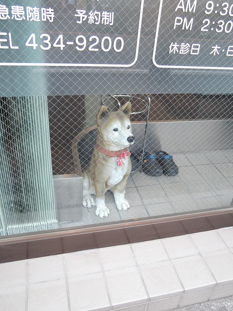 ある風景:Shirahata, Oguchi@Yokohama #6_d0393923_22254680.jpg