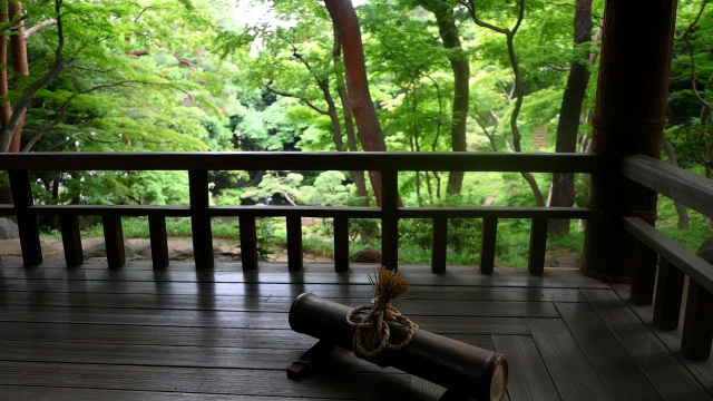 殿ヶ谷戸庭園_c0047919_14564022.jpg