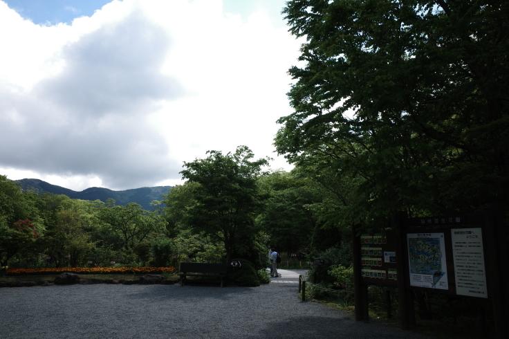 箱根町仙石原をぶらぶら その1 ~ 箱根湿生花園_a0287336_17331950.jpg
