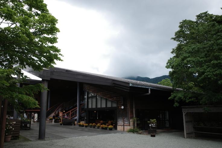 箱根町仙石原をぶらぶら その1 ~ 箱根湿生花園_a0287336_17524985.jpg