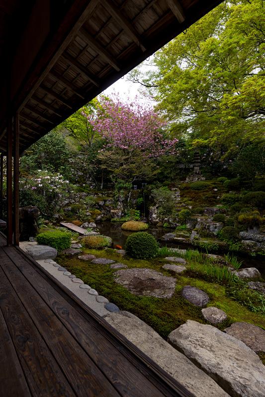 春の花咲く実光院_f0155048_23133485.jpg