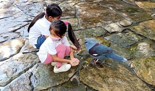 ジャスミン一家とバードパークで遊ぶ_d0083068_04200602.jpg