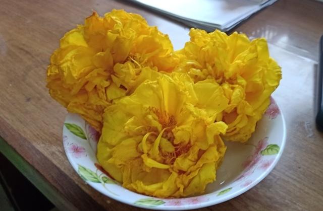 この花の名前知りませんか。_d0083068_08092656.jpg