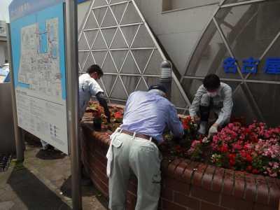 ガーデンふ頭総合案内所前花壇の植替えR3.6.14_d0338682_10162344.jpg