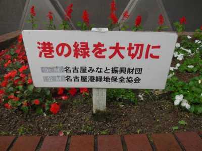 ガーデンふ頭総合案内所前花壇の植替えR3.6.14_d0338682_10165499.jpg