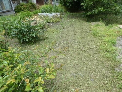 草刈り_c0108198_15040633.jpg