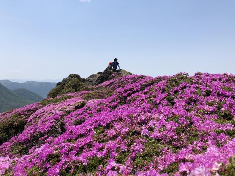ミヤマキリシマの咲く平治岳へ_d0116009_01350145.jpg