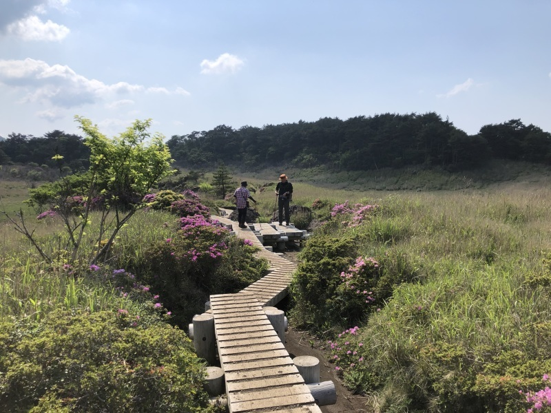 ミヤマキリシマの咲く平治岳へ_d0116009_01380776.jpg