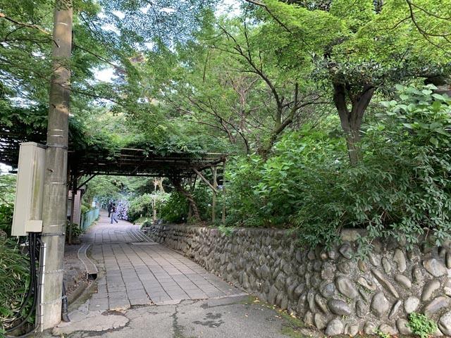 高幡不動尊境内散策コースから、かたらいの路多摩丘陵コースへ。_e0133780_21334453.jpg