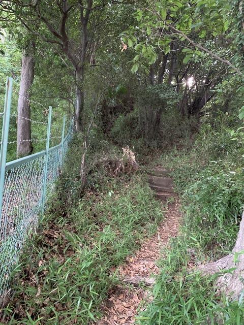 高幡不動尊境内散策コースから、かたらいの路多摩丘陵コースへ。_e0133780_21354596.jpg