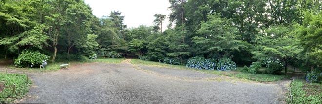 高幡不動尊境内散策コースから、かたらいの路多摩丘陵コースへ。_e0133780_21473670.jpg