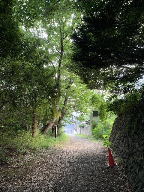 高幡不動尊境内散策コースから、かたらいの路多摩丘陵コースへ。_e0133780_21510056.jpg