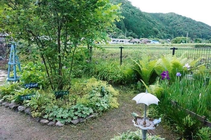 庭の景色あれこれ_e0365880_22040285.jpg