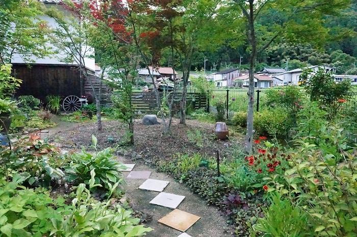 庭の景色あれこれ_e0365880_22041711.jpg