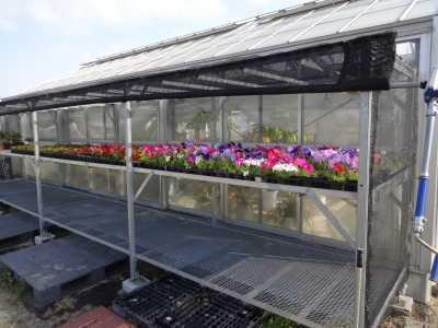 大手銀杏の会さんに花鉢の販売を行いました!R3.6.2_d0338682_10284514.jpg
