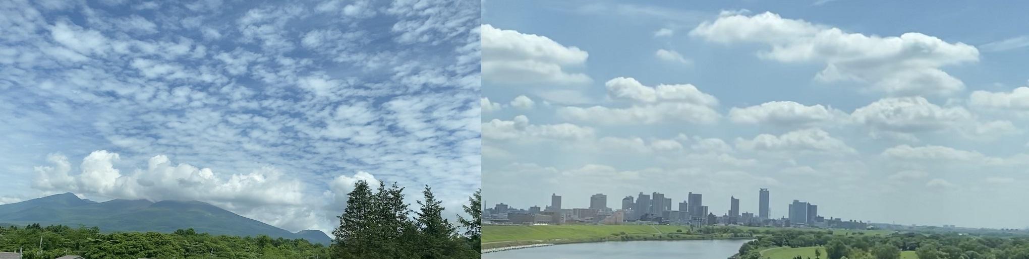 遠い東京で、、、正論を言える反骨があるか_b0115629_19360502.jpg