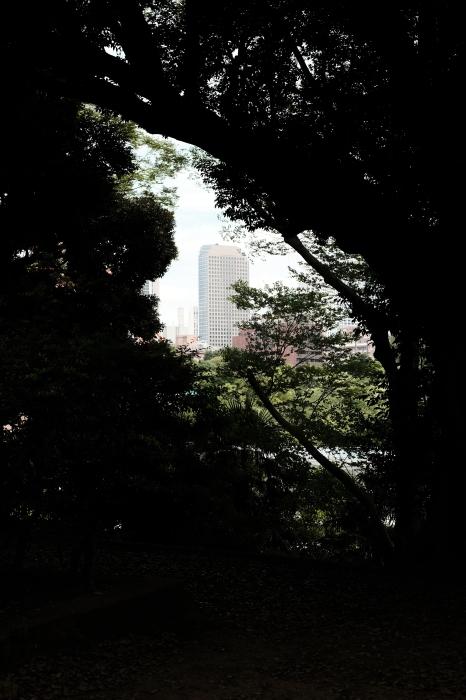 芝公園  緊急事態宣言下の2021年6月12日(土)_c0080357_15191243.jpg