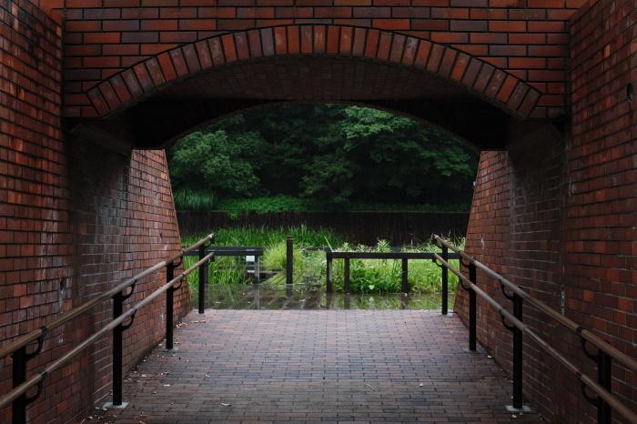 多摩川台公園(大田区)  緊急事態宣言下の2021年6月19日(土)_c0080357_15520511.jpg