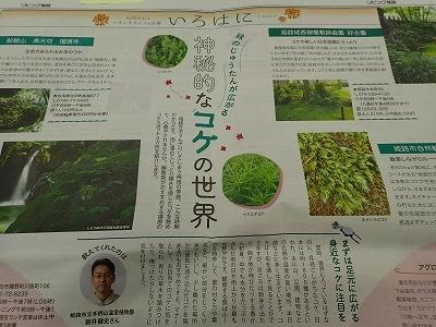 雨似合う古典植物と山野草展_f0203094_10223527.jpg