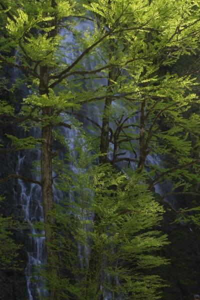 日本風景写真協会(JNP)presents「ニッポン津々浦々、撮影地案内!」(福井編)2/3回_c0142549_22044299.jpg