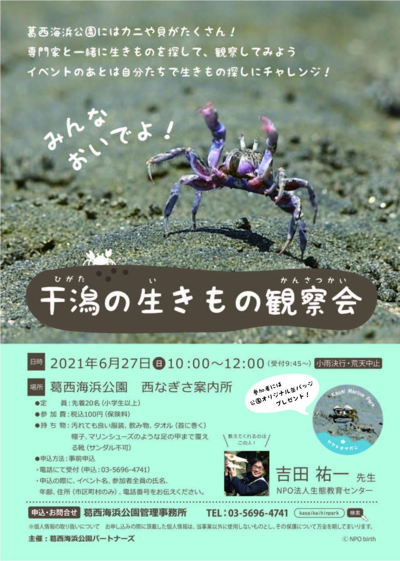 ★干潟の生き物観察会_e0046474_19583406.jpg