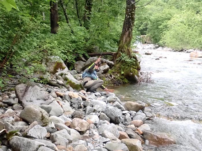 父の日の付き合いはブナの森へ_c0120834_17084045.jpg