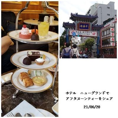 畑へ  横浜へ  ワクチン接種_c0051105_18113503.jpg