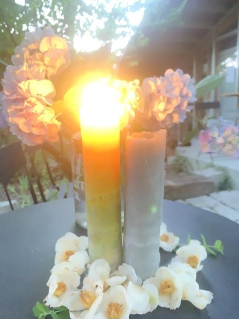 20210621 夏至の日沙羅双樹のお花とキャンドルナイト_d0145345_11440791.jpeg