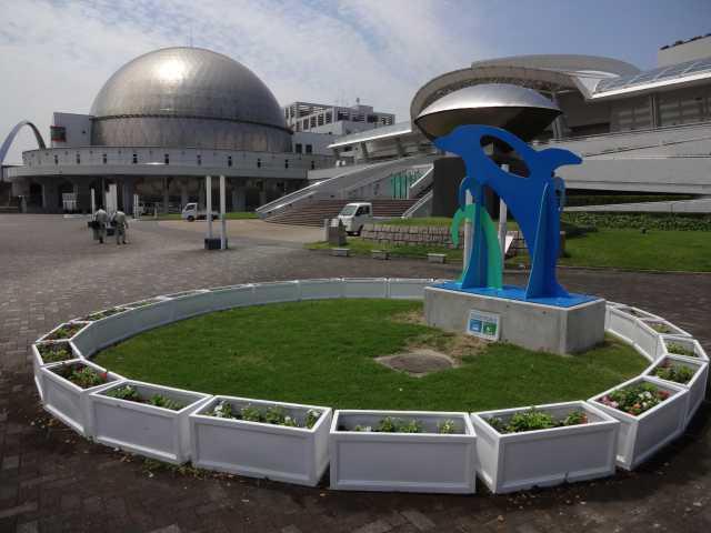 名古屋港水族館前のプランター花壇の管理をはじめました!_d0338682_08174963.jpg