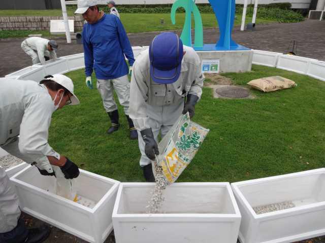 名古屋港水族館前のプランター花壇の管理をはじめました!_d0338682_08250060.jpg