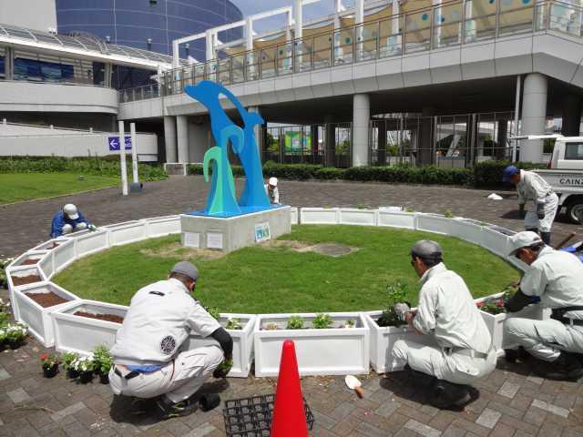 名古屋港水族館前のプランター花壇の管理をはじめました!_d0338682_08260241.jpg