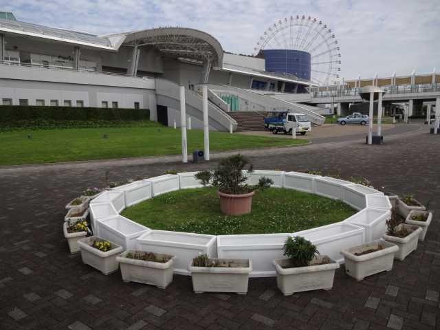 名古屋港水族館前のプランター花壇の管理をはじめました!_d0338682_08270163.jpg