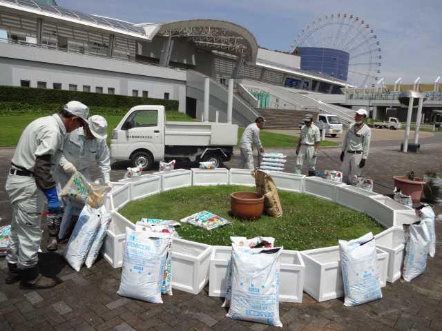 名古屋港水族館前のプランター花壇の管理をはじめました!_d0338682_08272733.jpg
