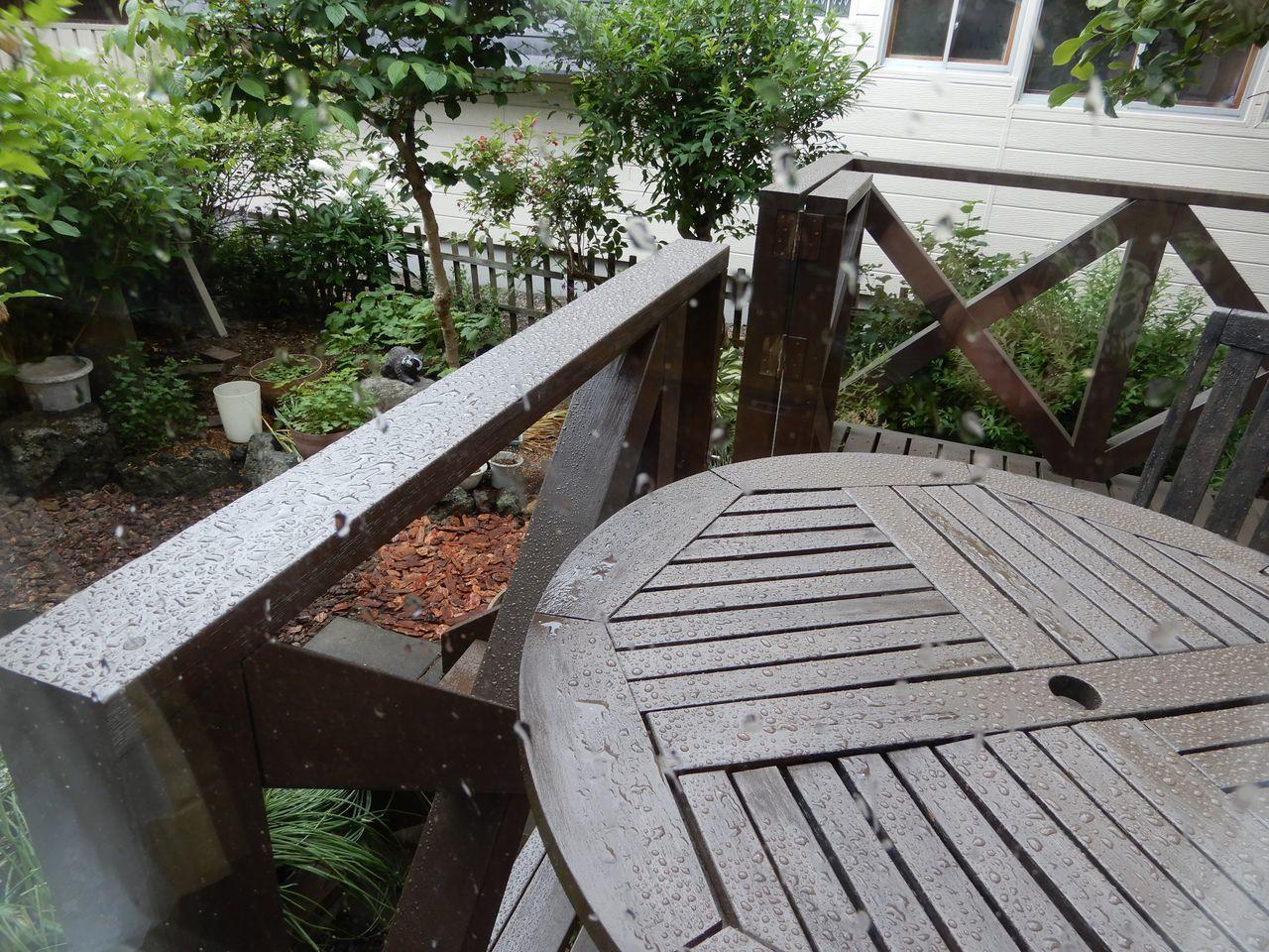 午前中には通り雨_c0025115_21350959.jpg