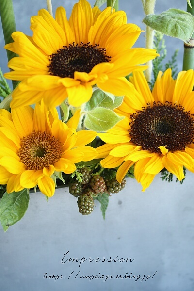 定期装花から サンリッチup_a0085317_16111925.jpg