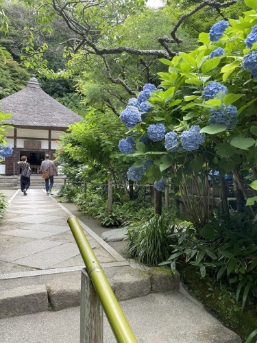 鎌倉_c0201749_00065625.jpeg