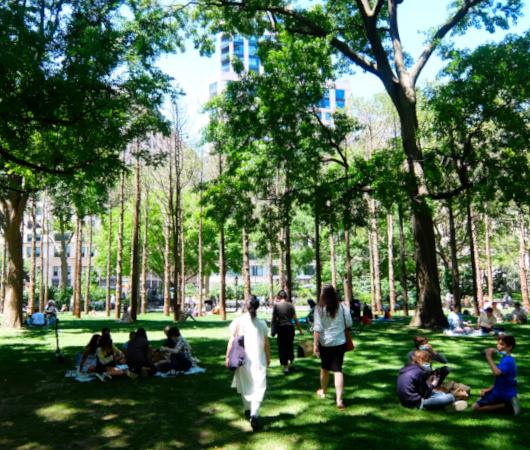 NYの公園にじわじわ系アート、『オバケの森』(Ghost Forest)登場中_b0007805_02441388.jpg