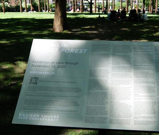 NYの公園にじわじわ系アート、『オバケの森』(Ghost Forest)登場中_b0007805_02442461.jpg